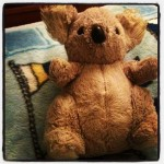 Pet Please #70: Keeping Your Favorite Stuffed Animal Through Adulthood