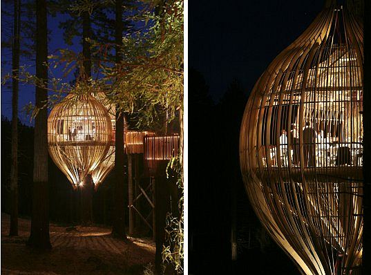 Yellow-Treehouse-Restaurant-4