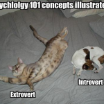 9 Tips for Better Communication Between Introverts, Extroverts, Thinkers, and Feelers