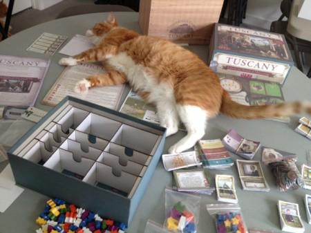 components cat