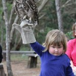 The Best Photo of a Girl Holding an Owl That You'll See Today