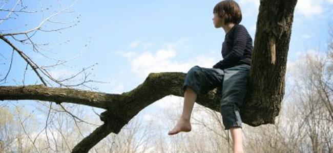 Climbing-Trees