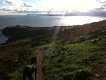 My solo trip to Ireland.