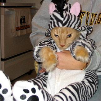 tan-zebra-fb