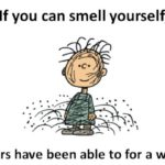 Have You Ever Had a Smelly Friend?