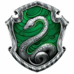 I'm Slytherin, and I'm Proud of It